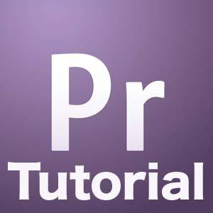 pprotutorial Adobe CS5 Free Web Workshop With Richard Harrington