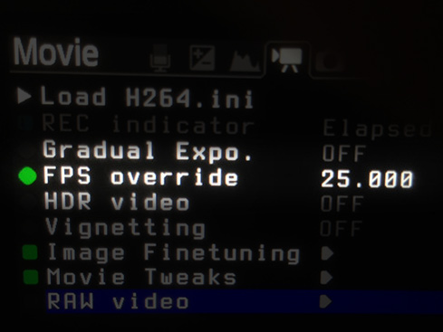 The 5D mark III can do 25fps in RAW 1080p