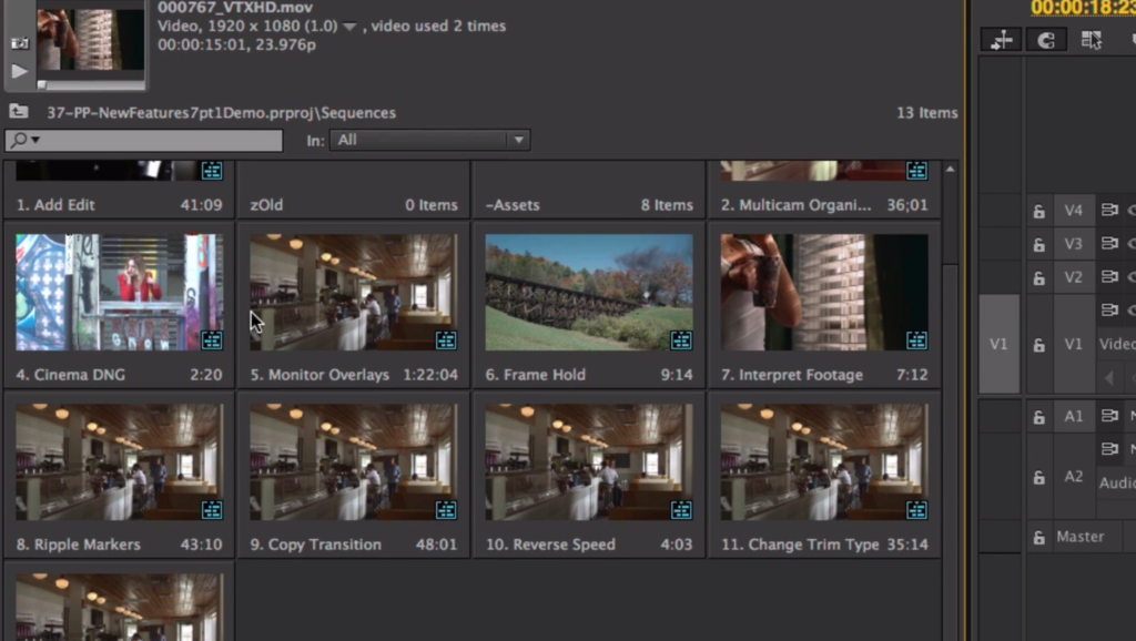 premiere pro sequence view