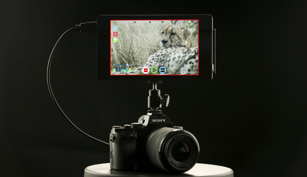 NAB 2014 - 4K Combination from Atomos and Sony