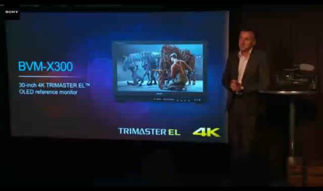 Sony BVM-X300