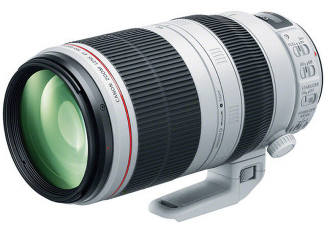 Canon 100-400mm IS II 2