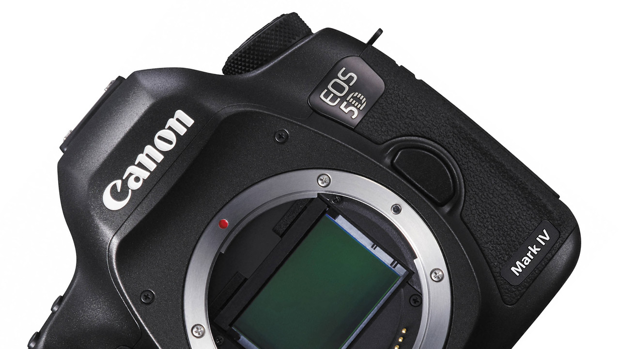 Canon 5d mark iv being tested in the wild coming in for 5d mark iv