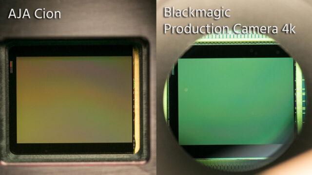 cion-blackmagic-same-sensor