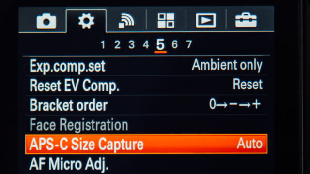 A7s APS C capture size