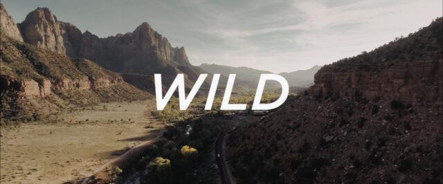 wild-panasonic-gh4-n