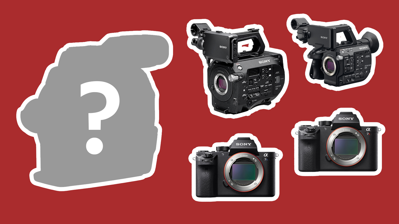 Is the Canon C300 Mark II Still Competitive? A Look at the Best Large Sensor Cameras