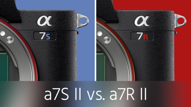 a7R II vs a7S II