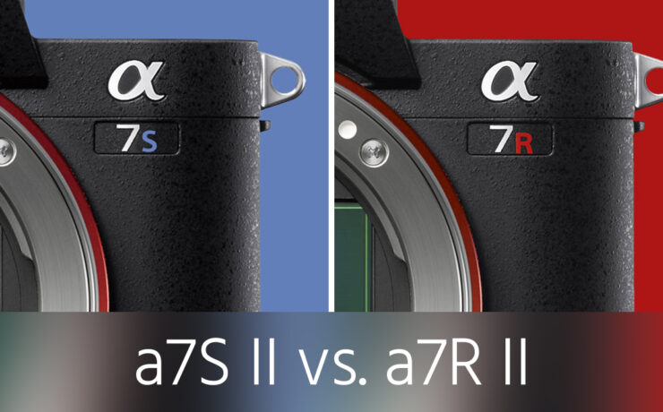 Sony a7S II vs. a7R II Test – Which One Is Right for You?