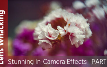 Lens Whacking - How to Create Stunning In-Camera Effects - Part 1