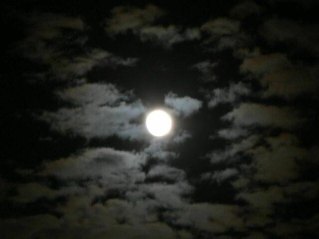 moon-at-night-landscape