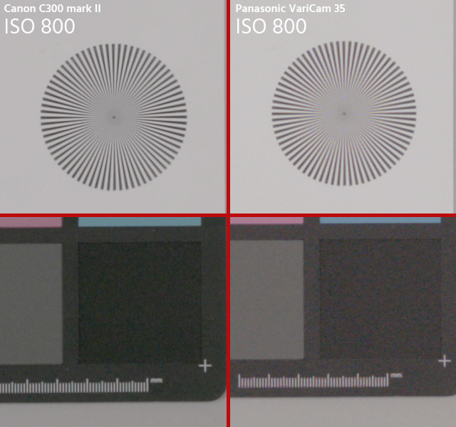 Image Quality Compared: Canon C300 mark II vs. Panasonic VariCam 35.