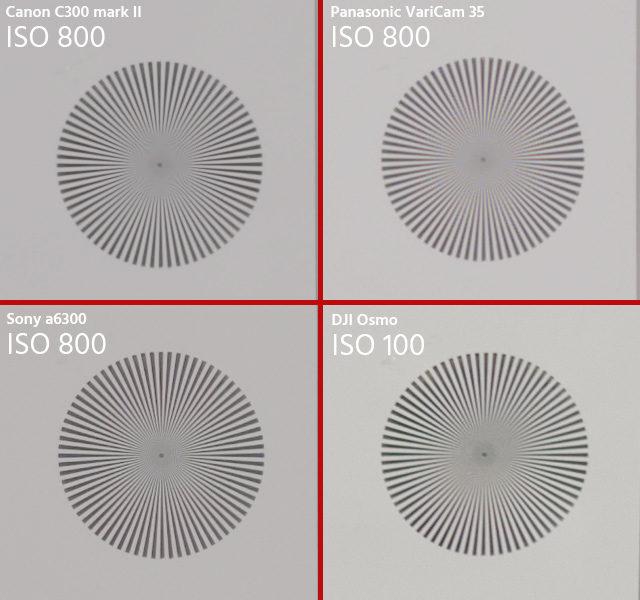 DJI Osmo RAW Image Quality - 100% crop of 4K image