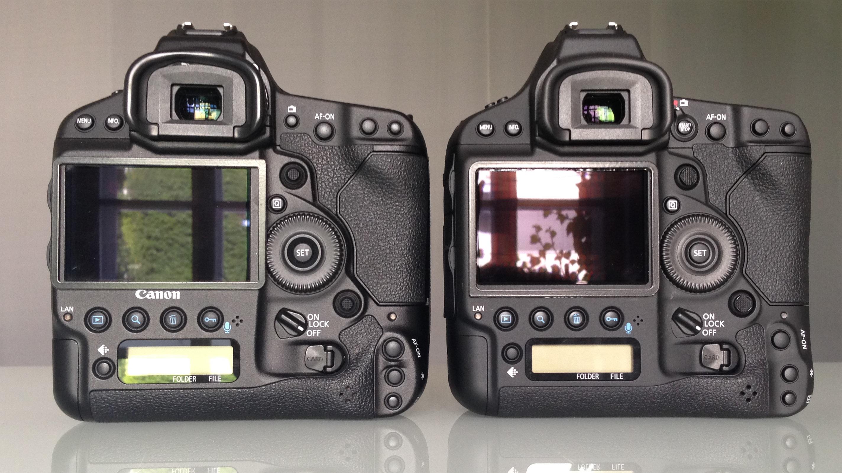 Canon macro photography: kwietnia 2016.