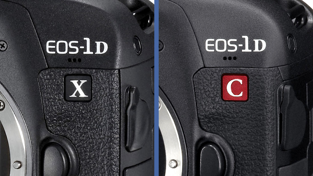 Canon 1D X Mark II vs  Canon 1D C - Which One Shoots