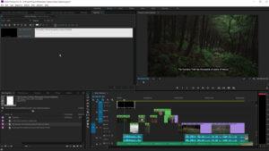 Premiere Pro CC 2015.3 Open Caps