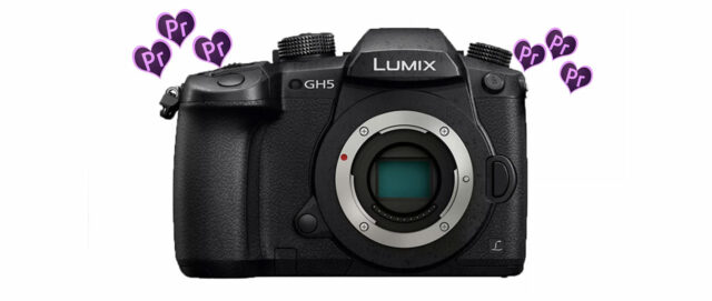 GH5 and Premiere Pro Reuniting