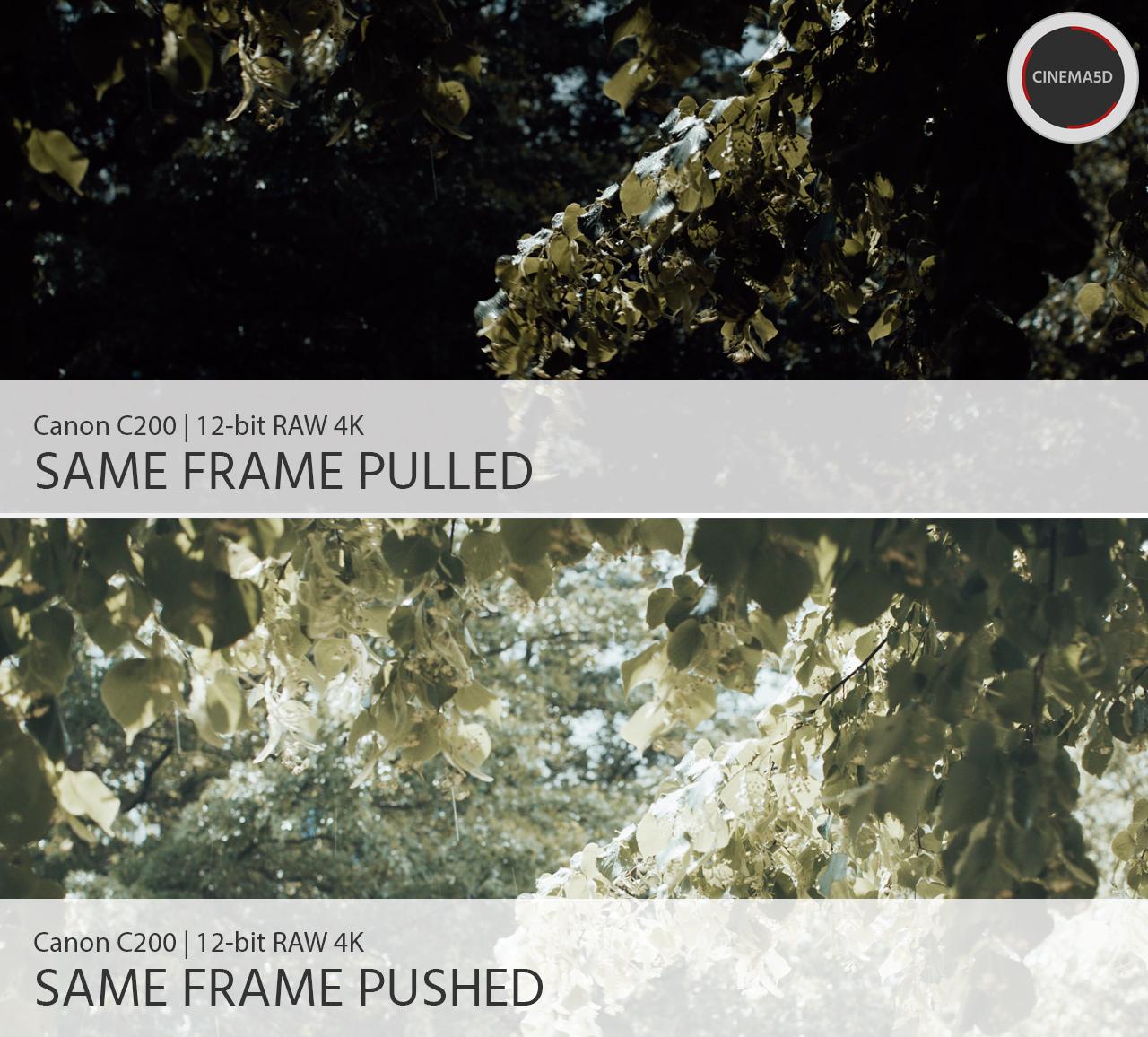 Canon C200 Review - Impressive RAW Footage & Ergonomics For Little