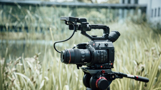 Canon C200 with Canon 100mm F/2.8 L Macro Lens