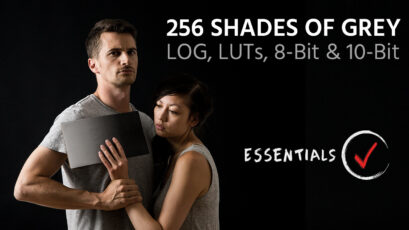 256 Shades of Grey – LOG, LUTs, 8-Bit and 10-Bit