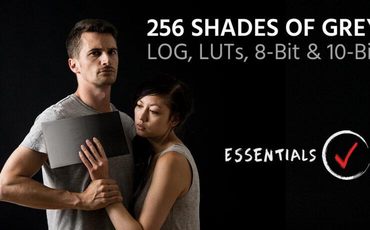 256 Shades of Grey – LOG, LUTs, 8-Bit and 10-Bit