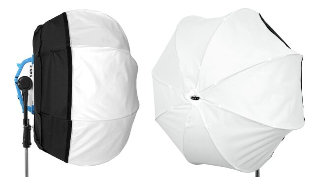 dopchoice lantern