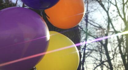 Schneider True-Streak Rainbow Filter For The Anamorphic Look