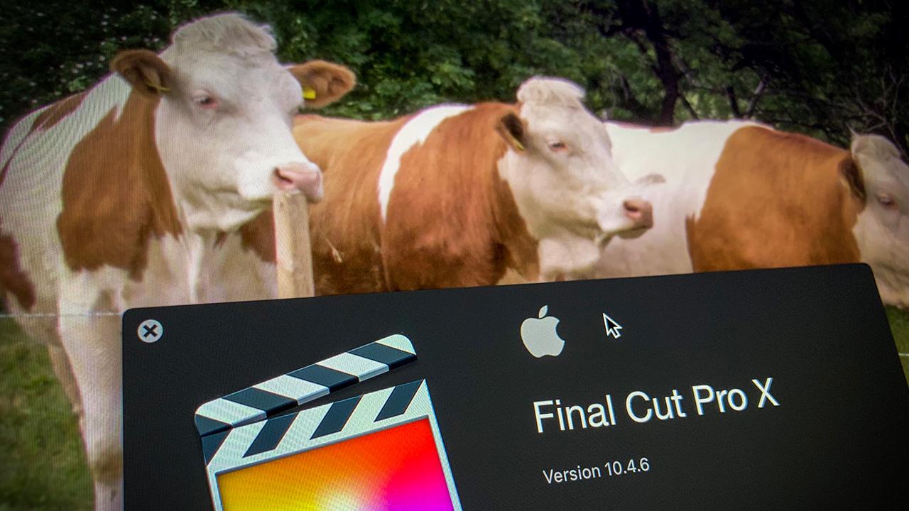 Lanzan actualización de Final Cut Pro X 10.4.6
