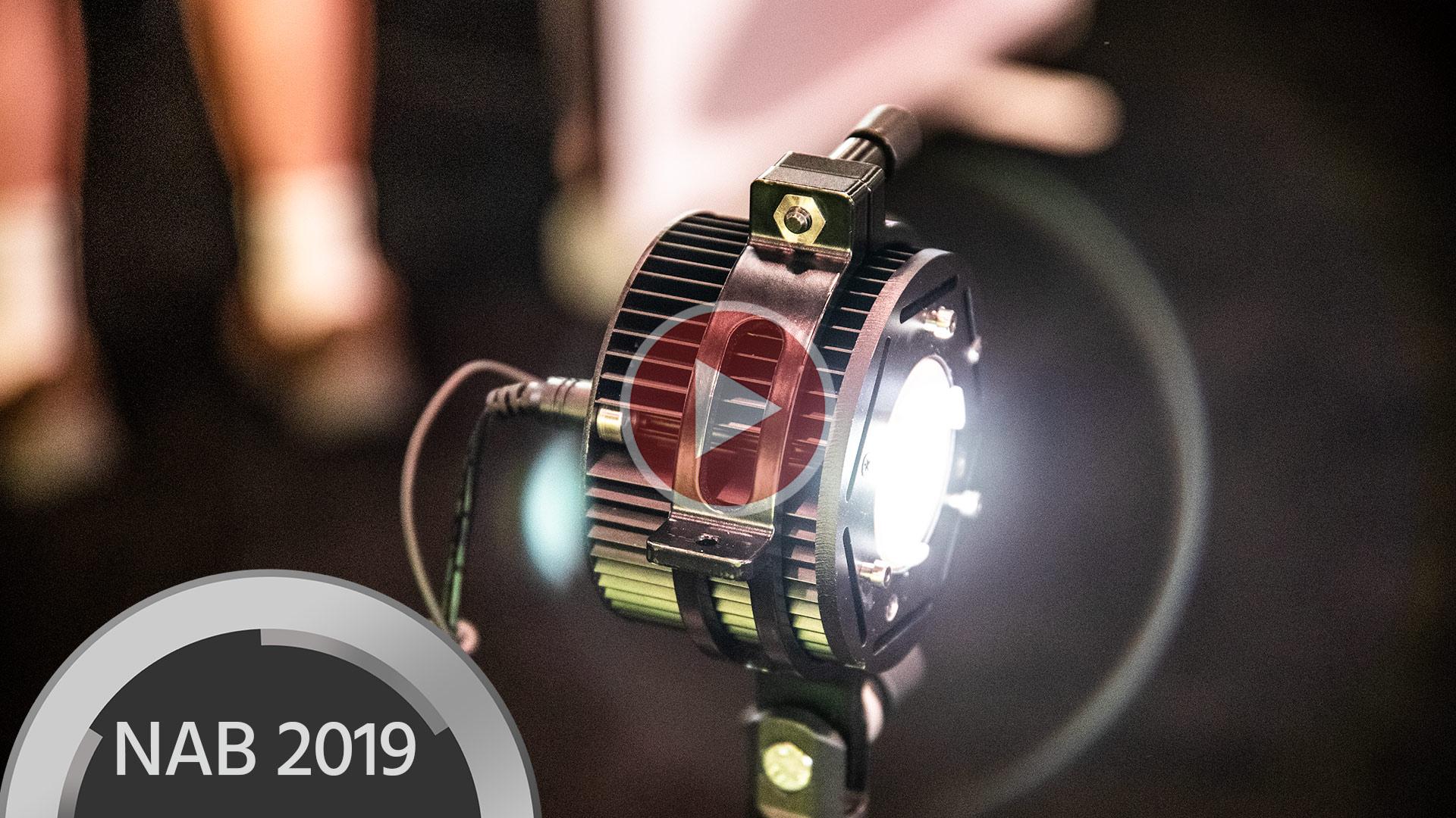 Hive LightingがBumble Bee 25-Cライトを発表
