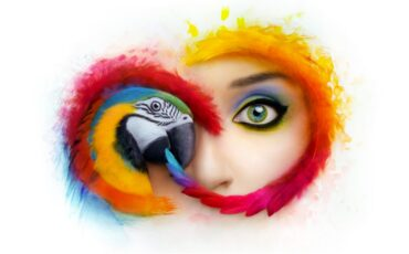 Adobe Changes Availability of Creative Cloud Applications, Concerning?
