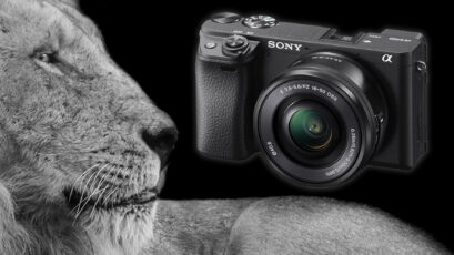 Sony a6400 Firmware 2.0 Enables Real-Time Animal Eye Autofocus
