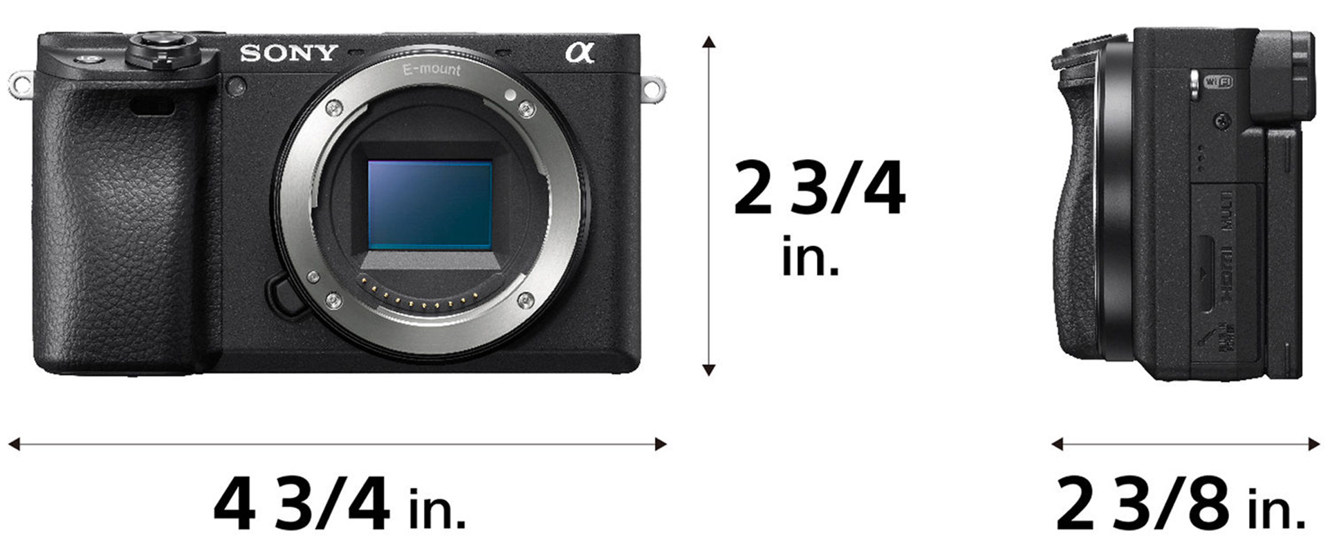 Sony a6400 Firmware 2 0 Enables Real-Time Animal Eye Autofocus