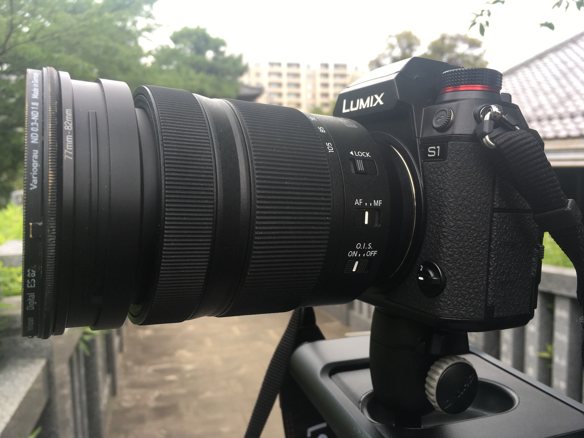 Panasonic LUMIX S1 V-Log - First Look and Sample Footage