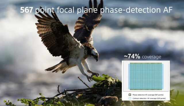 Sony A7RIV - 567 point focal plane phase-detection AF