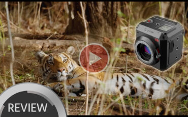 Z CAM E2 Cinema Camera in the Wild - Hands-on Review
