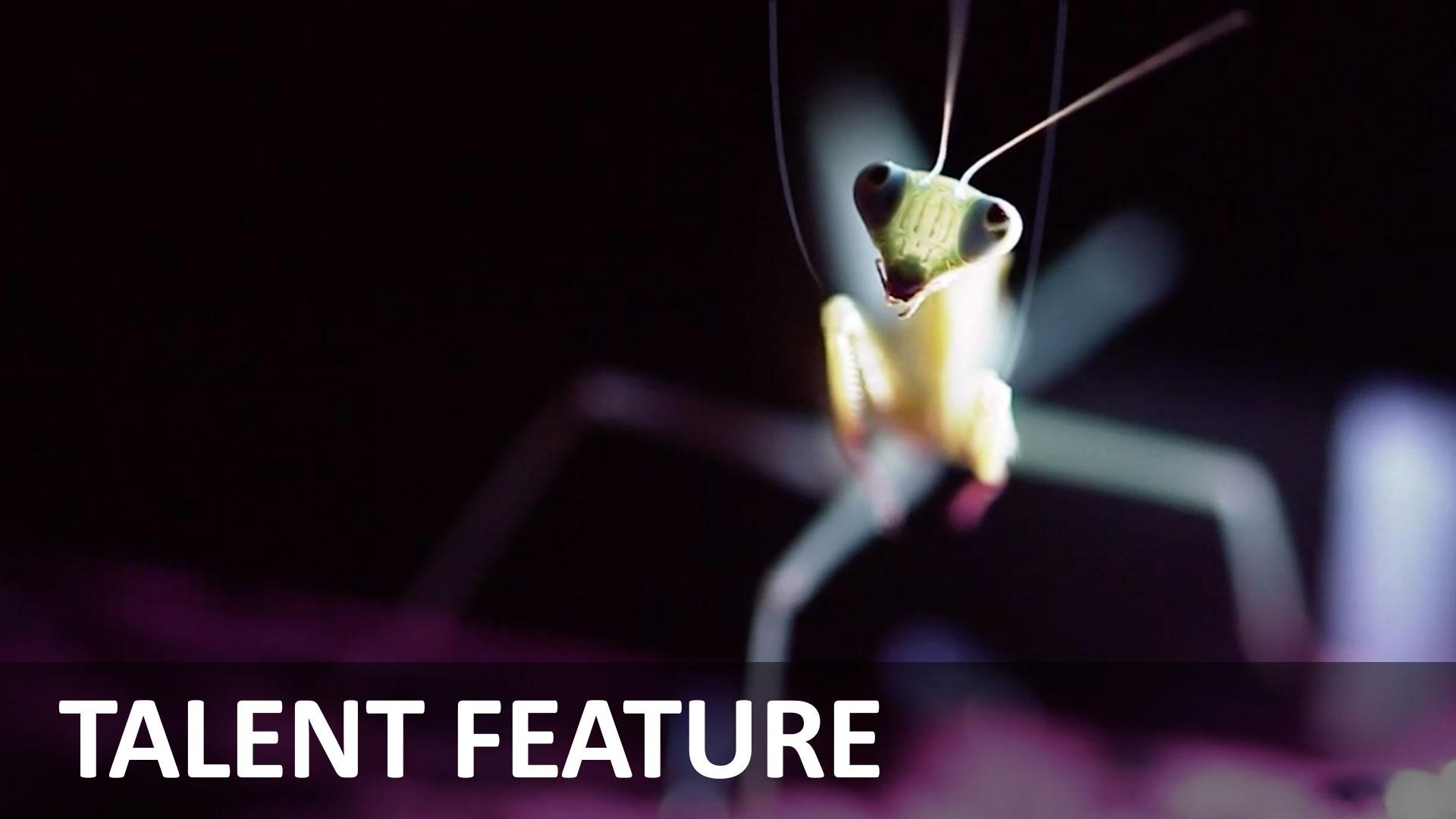 昆虫を撮影する - Cokau Labインタビュー
