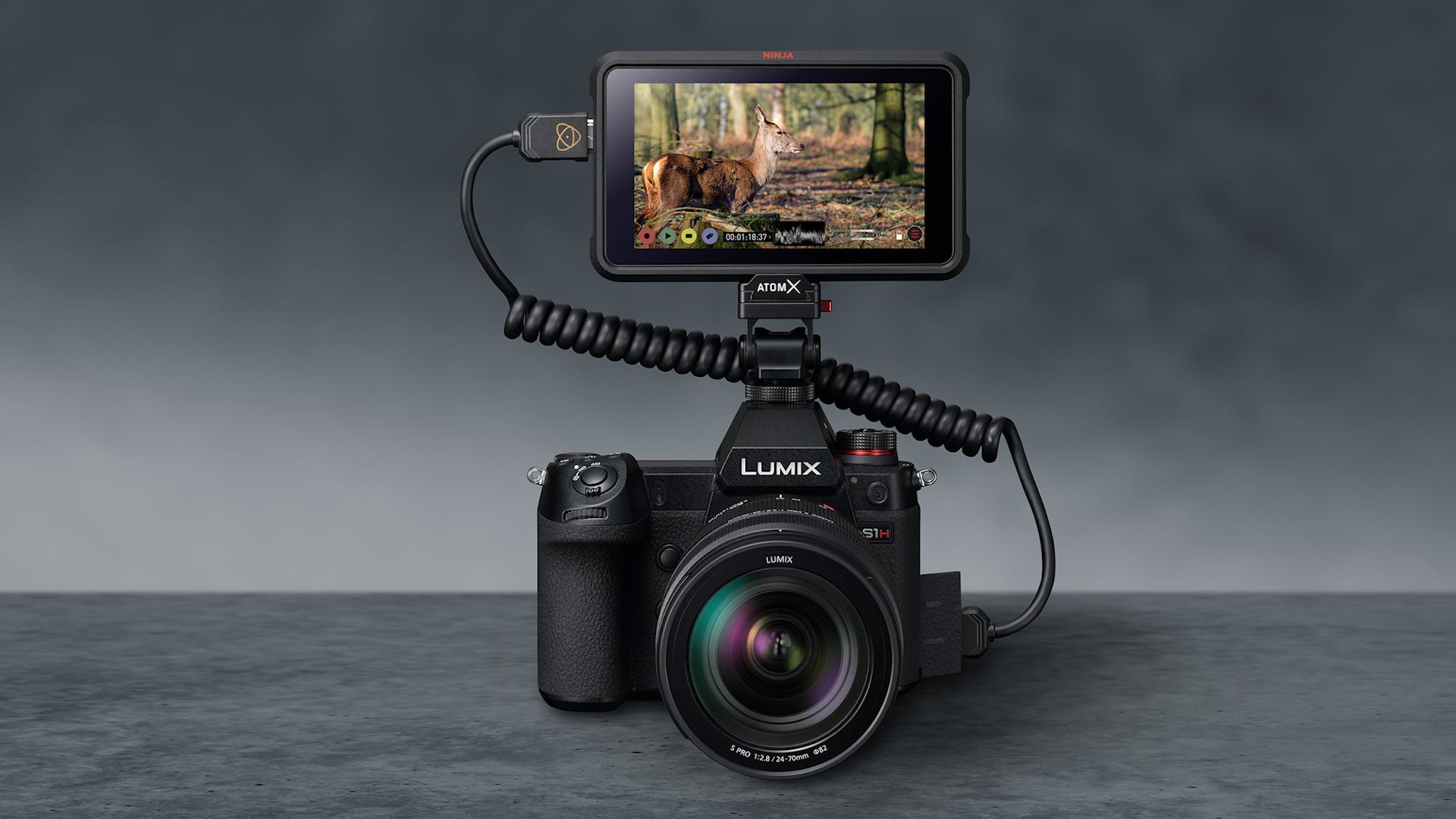 Programa de lanzamiento de firmware de la Panasonic S1H - Salida de datos de video RAW a través de HDMI