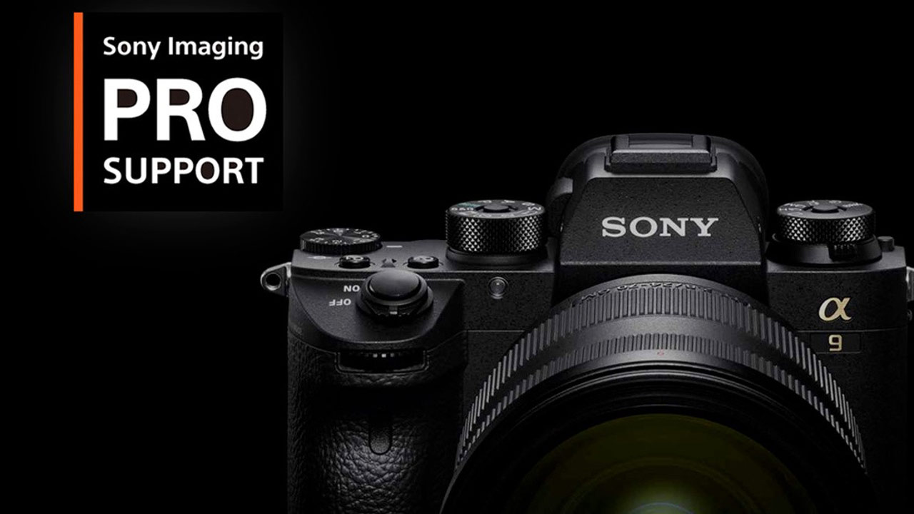 Sony PRO Support Free 6-Month Extension for All US & Canadian Members