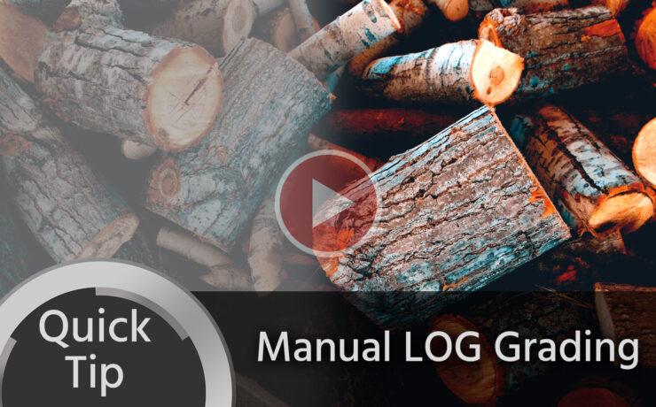 Quick Tip: Easy Manual LOG Grading