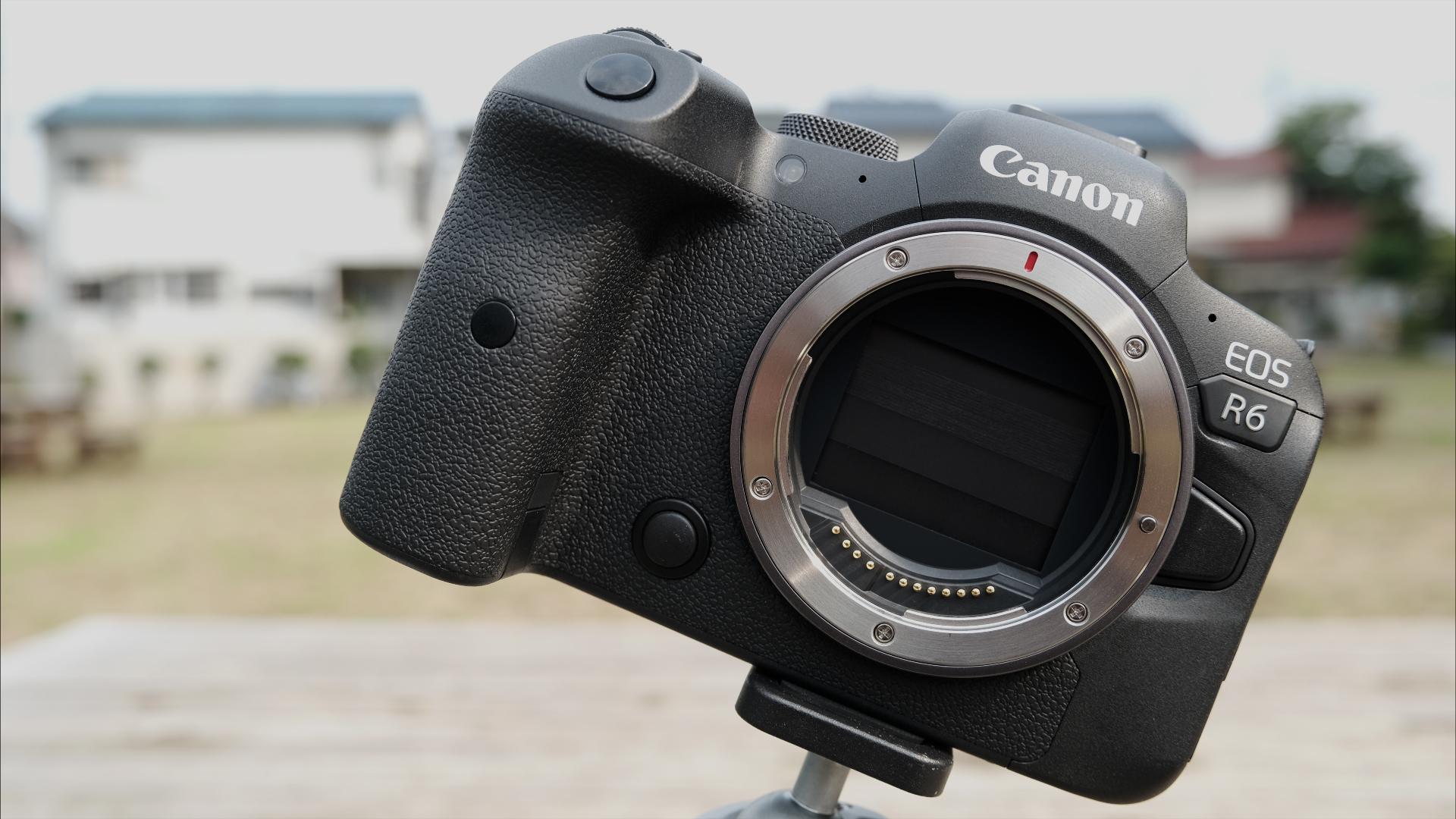 Reseña y primera impresión sobre la Canon EOS R6 junto a material de muestra- Gran limitación, dudosa herramienta de video