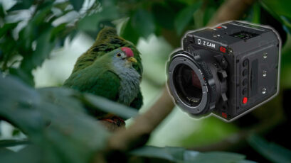 Z CAM E2-F6 Review, Lab Test and Sample Footage: A Visit to the Zoo Schoenbrunn