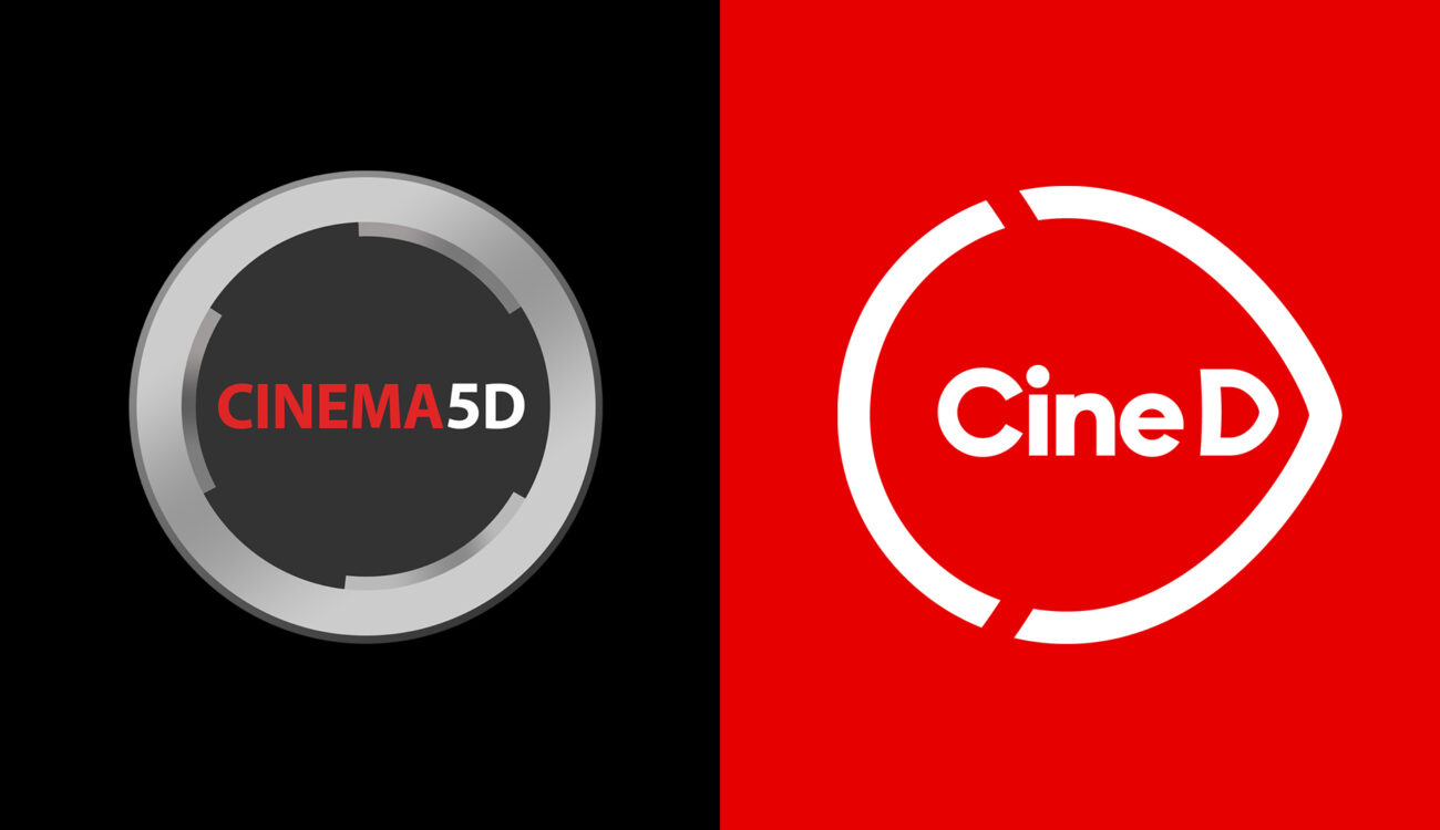 CineD user survey