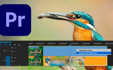 Actualización de Adobe Premiere Pro versión 14.4: Detección de escena y nuevas funciones