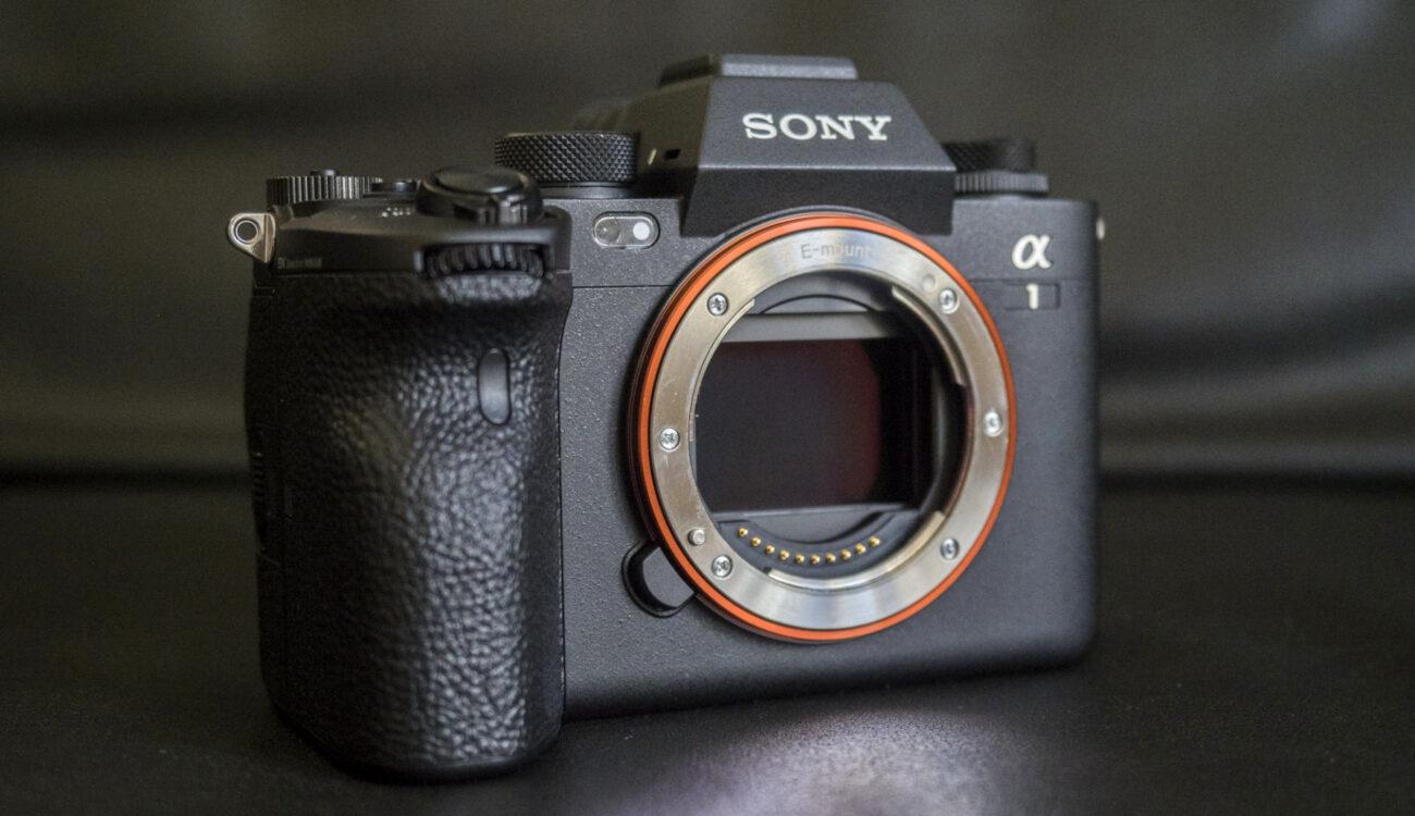Reseña de la Sony Alpha 1 para fotógrafos: mi opinión personal