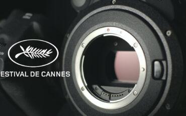 Cannes 2021 - ¿Qué cámaras utilizaron los nominados?