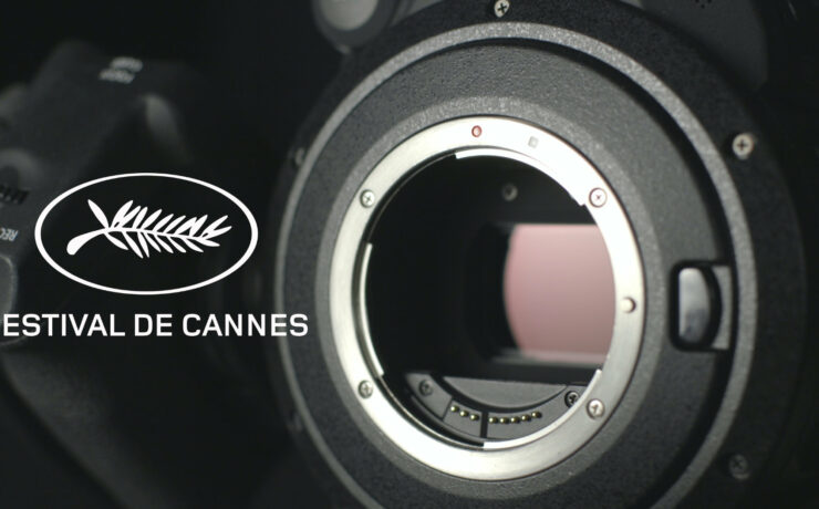 Cannes 2021 - Which Cameras Did Nominees Use?