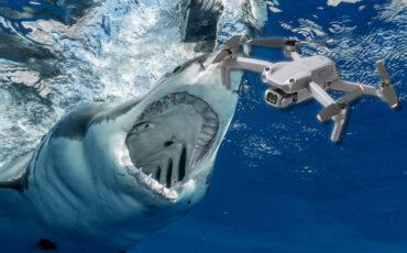 Un piloto de drones ayudó a rescatar a un pescador que fue atacado por un tiburón