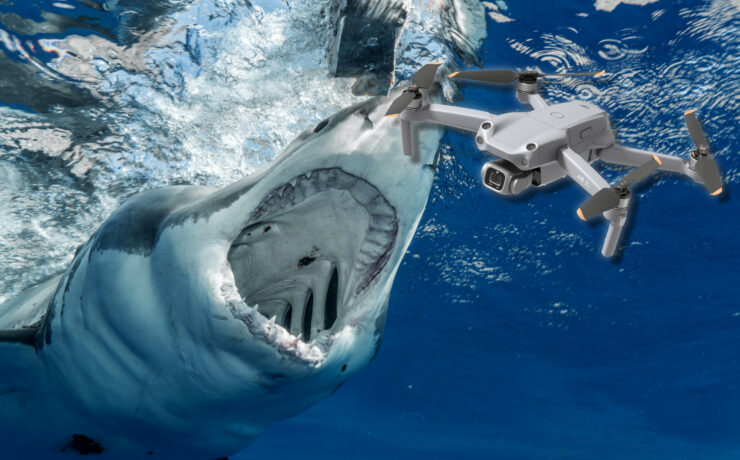 Drone Pilot Helps Rescue Fisherman Attacked by a Shark